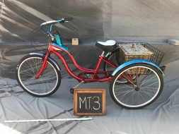 M T3.1