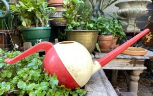watering cans10