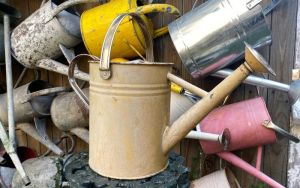 watering cans5