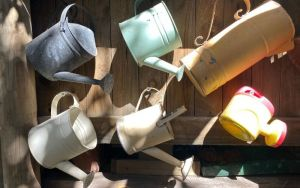 watering cans8